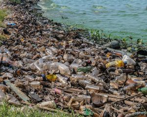 Plastic Patch in Pacific Ocean Growing Rapidly